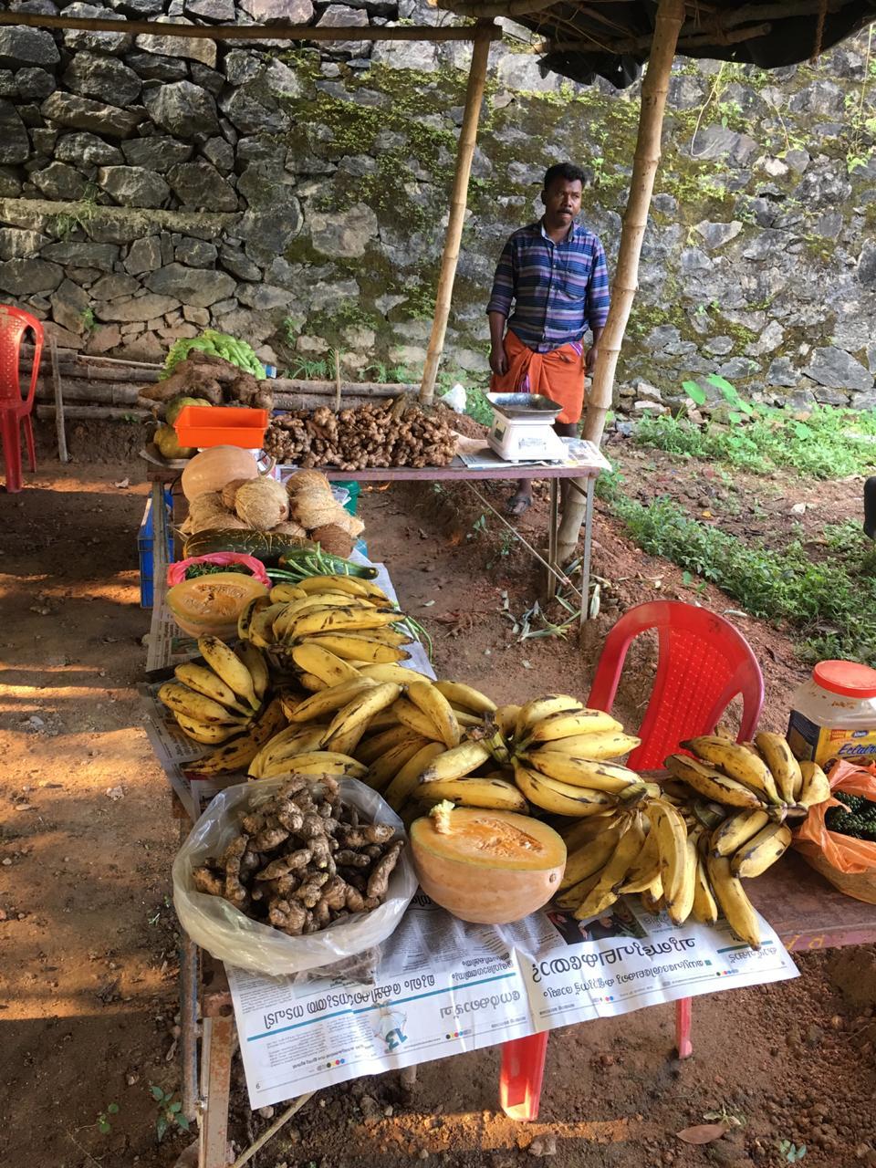 Kerala local organic market