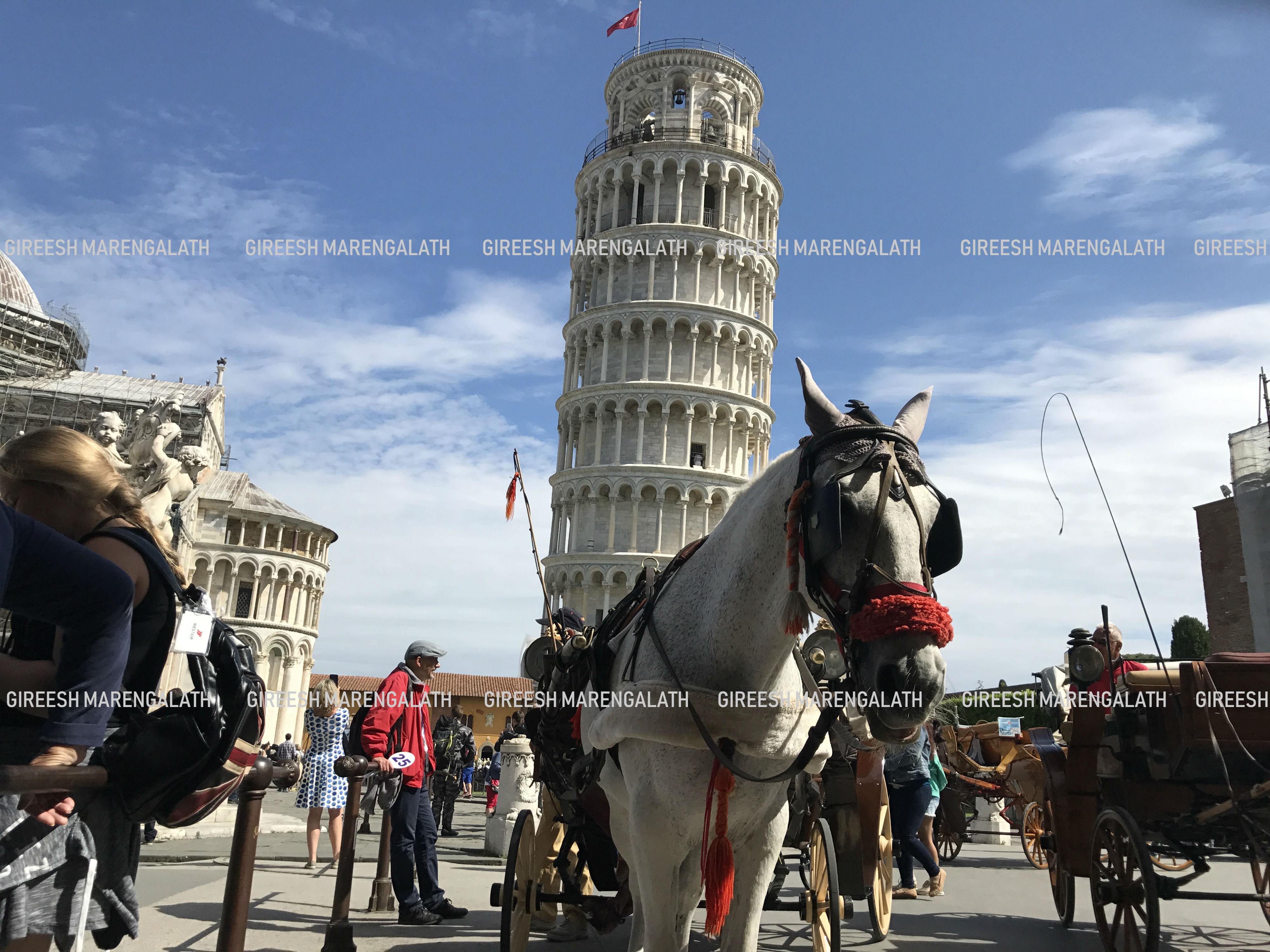 Mobile phone photo of Pisa Leaning Tower, Italy. Photo credit: Gireesh Marangelath